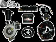 Комплект ГБО Stag Qbox Basic (редуктор LendiRenzo, форсунки AEB, фильтр)